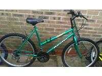 Ladies adult mountain bike