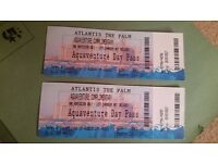 Palm Atlantis Aquaventure tickets x 2 - Dubai