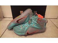 Nike Lebron 12 XII NSRL