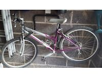 3 x bikes for sale