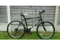 Mens 21 speed mountain bike