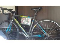 Specialized Allez Elite 2015 Road Bike