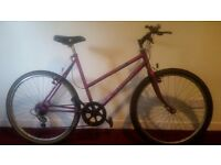 Raleigh ISIS Ladie's Mountain Bike with Light's