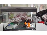 Aqua one 61l ecostyle tropical fish tank