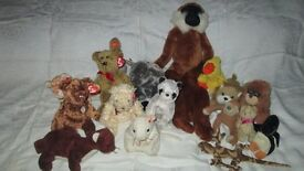 ty beanie babies and other soft toys - lot 1