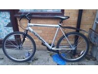 Bike (Mint Condition)