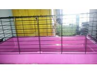 Guinea pig cage for sale