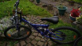 Giant mountain bike (24 inch wheels)