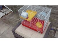 All hamster hamster cage