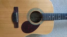 Greg Bennett 12 String Guitar - mint condition.