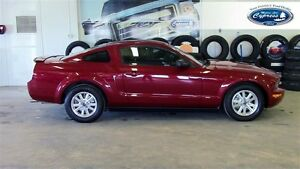 2008 Ford Mustang V6 (Power Driver Seat  Shaker 500 Audio System