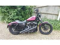 Harley Davidson XL883N sportster Iron