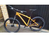 Bianchi mountain bike