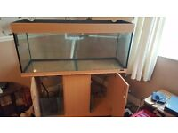 4ft Fish Tank with Sump + Equipment