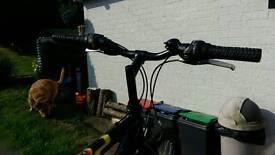 Bike Raleigh Mountain Bike.Retro.