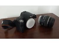 SONY A290 Digital SLR Camera