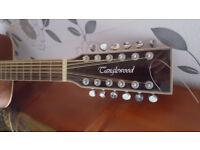 Tanglewood Evolution TW28/12CLNE 12 String Guitar