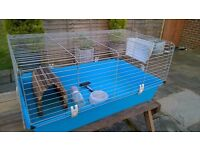 Guinea Pig / Rabbit / Cage / Hutch