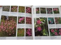 Gardeners Encyclopedia Book