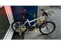 Teenagers mountain Bicycle