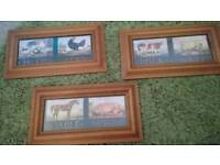 3 pine framed pictures