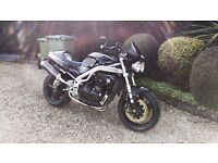 TRIUMPH SPEED TRIPLE 955i