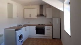 RECENTLY RENOVATED, BRAND NEW, MODERN, BRIGHT, 1 BEDROOM FLAT