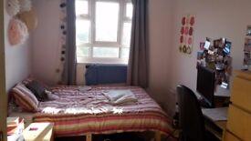 Double bedroom in friendly Putney flatshare