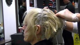 MODEL NEEDED FOR HAIR COLOUR
