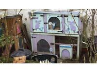 Rabbit and hutch - sold