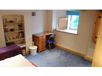 Double Room available in friendly house - Burford Road, Forest Fields