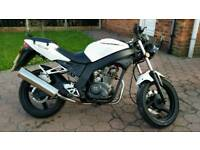 White knuckle 125r