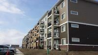FURNISHED EXECUTIVE CONDO SYTLE APARTMENTS