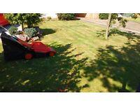 Lawnmower lawn mower flymo electric