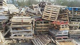 Firewood Pallets