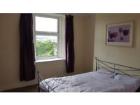 **NEWLY DECORATED HOUSE SHARE CENTRAL TORQUAY, viewing highly recommended**