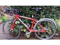 Children's Road Bike-Isla bike Luath 24
