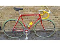 Gazelle Champion Mondial 1984/87 Campagnolo super record 56cm frame 531 Reynolds