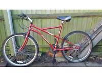 Mountain Bike, bicycle