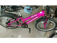 Girls Ridgeback Mountain Bike