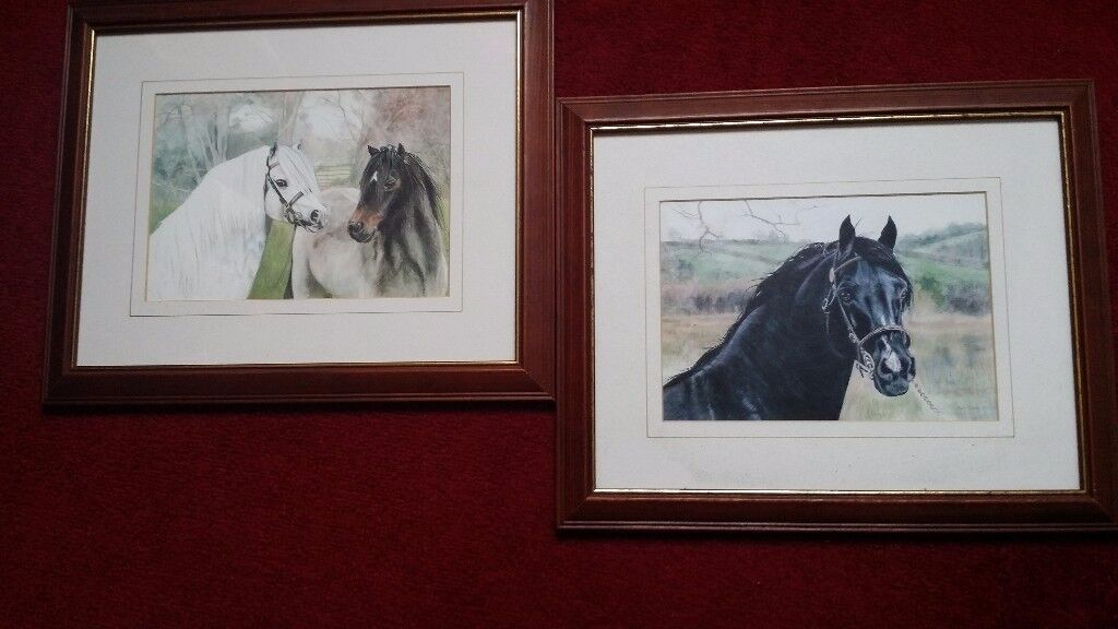 2 Horse Pictures for £8 !