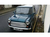 classic mini automatic 1275 lovely!