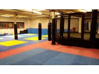 Mixed Martial Arts (MMA like UFC) Thai boxing and BJJ in Redhill