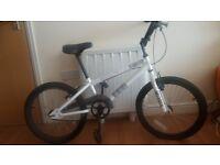 BMX -white