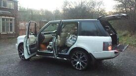 white range rover 3.0 diesel. 5500 no offers.