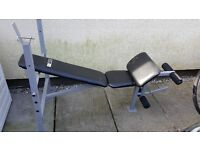 Pro Fitness Conditioning Bench with Bar bell and 30KG free weights