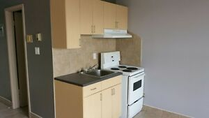 Bachelor unit in Downtown- 5879305851