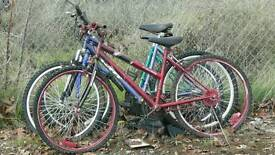 Old bicycles wanted