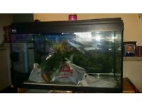 fish tank with heater and fillter with other bits.