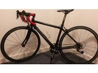 pro full carbon fibre road bike